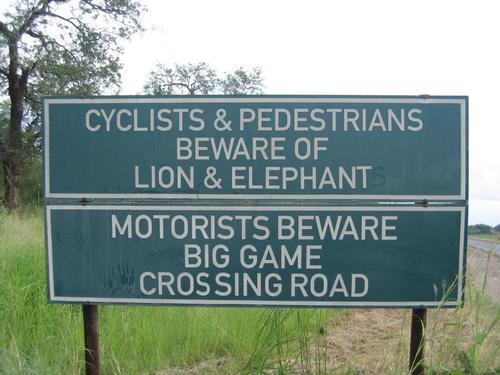 Bike trips in Swaziland anyone?