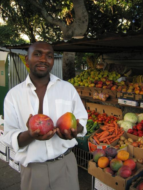 Maputo Mozambique Mango Mania