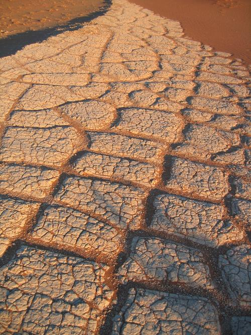 Cracked mud from an ancient river bed