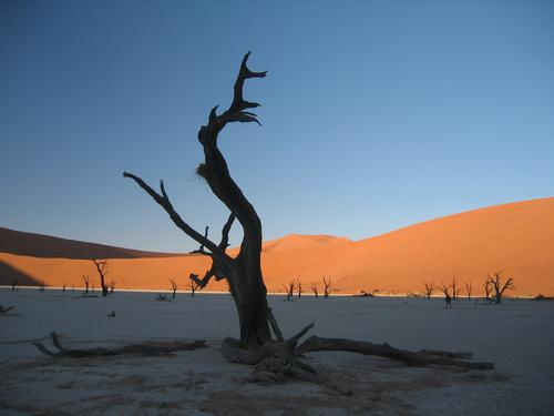 First light on Deadvlei