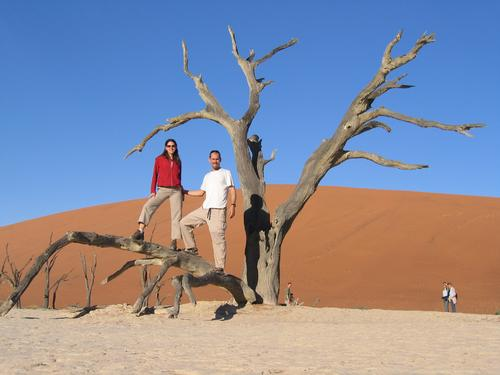 Tree in Deadvlei (cut off from water 500 years ago)