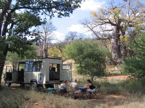 Safari lunch