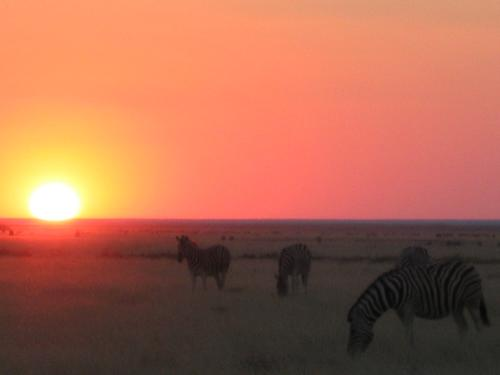 End of another dry day in Etosha