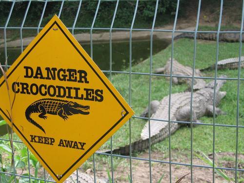 St. Lucia Crocodile Park