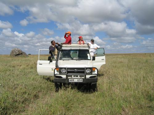 On safari in the Serengeti